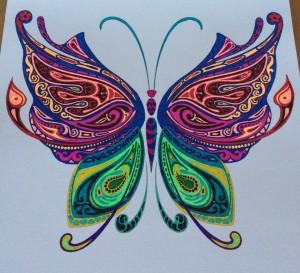 Papillon complexe