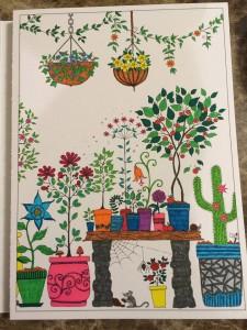 Pots de plantes