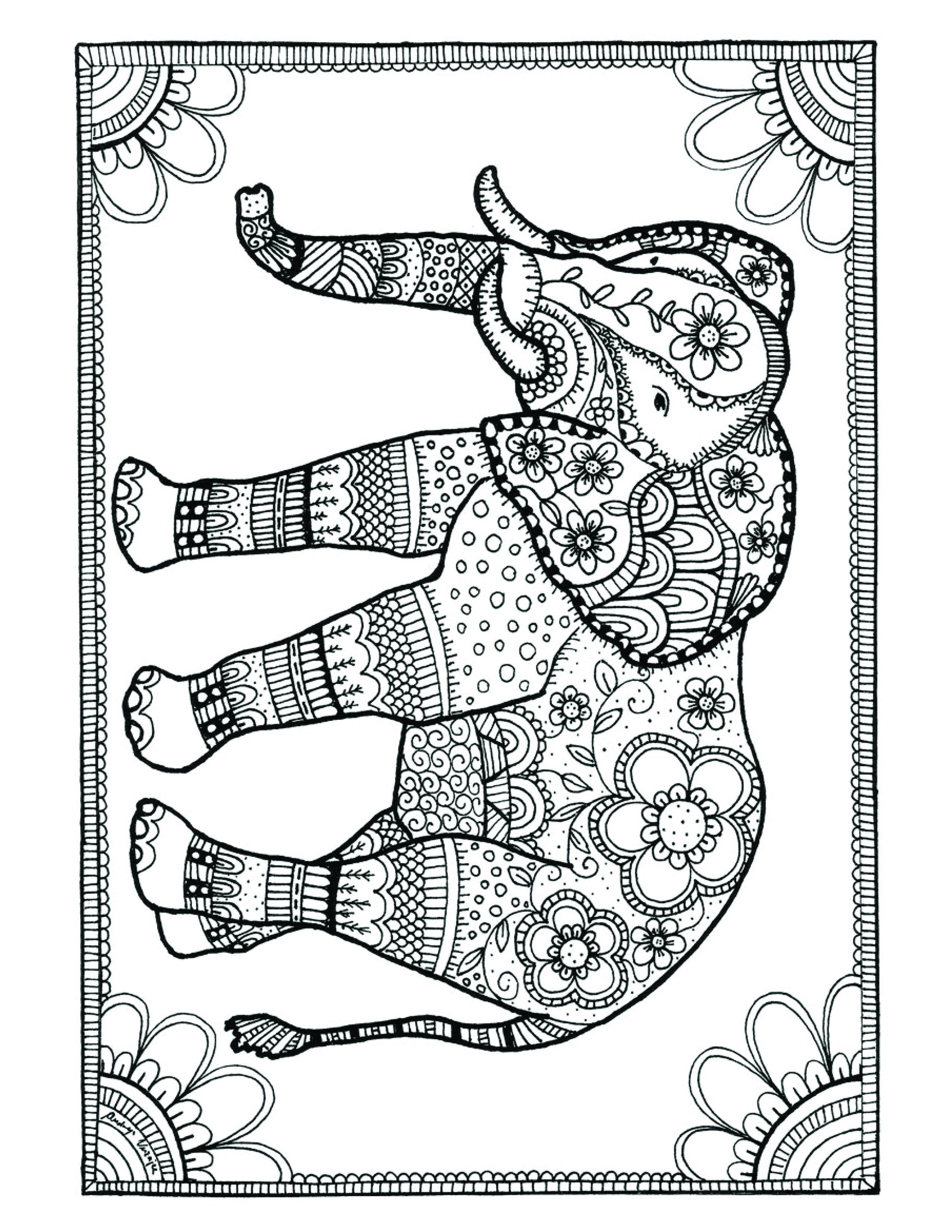 L'image du 25 Janvier 2016 Éléphant