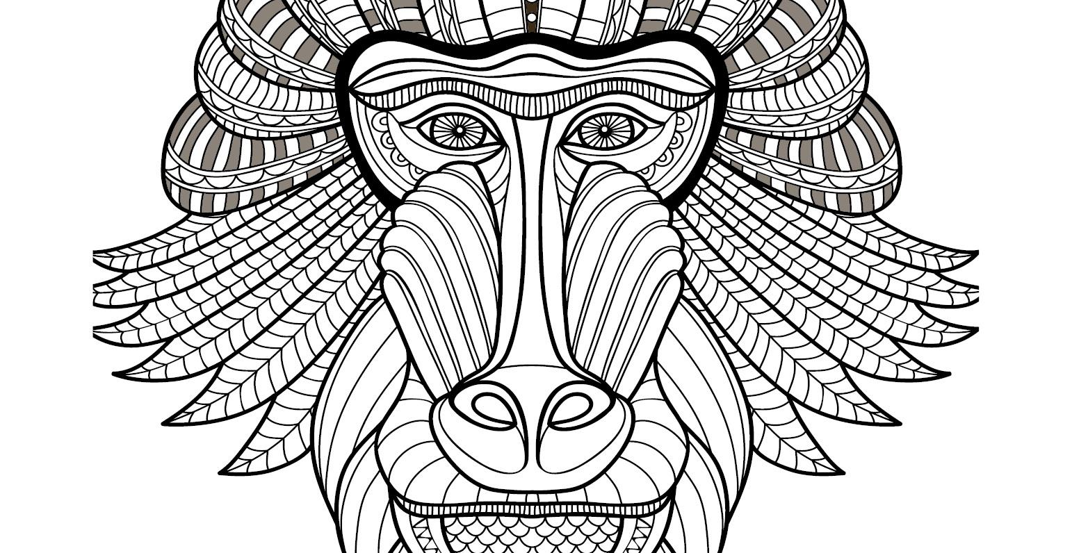 Coloriage gratuit singe babouin - Dessin de babouin ...