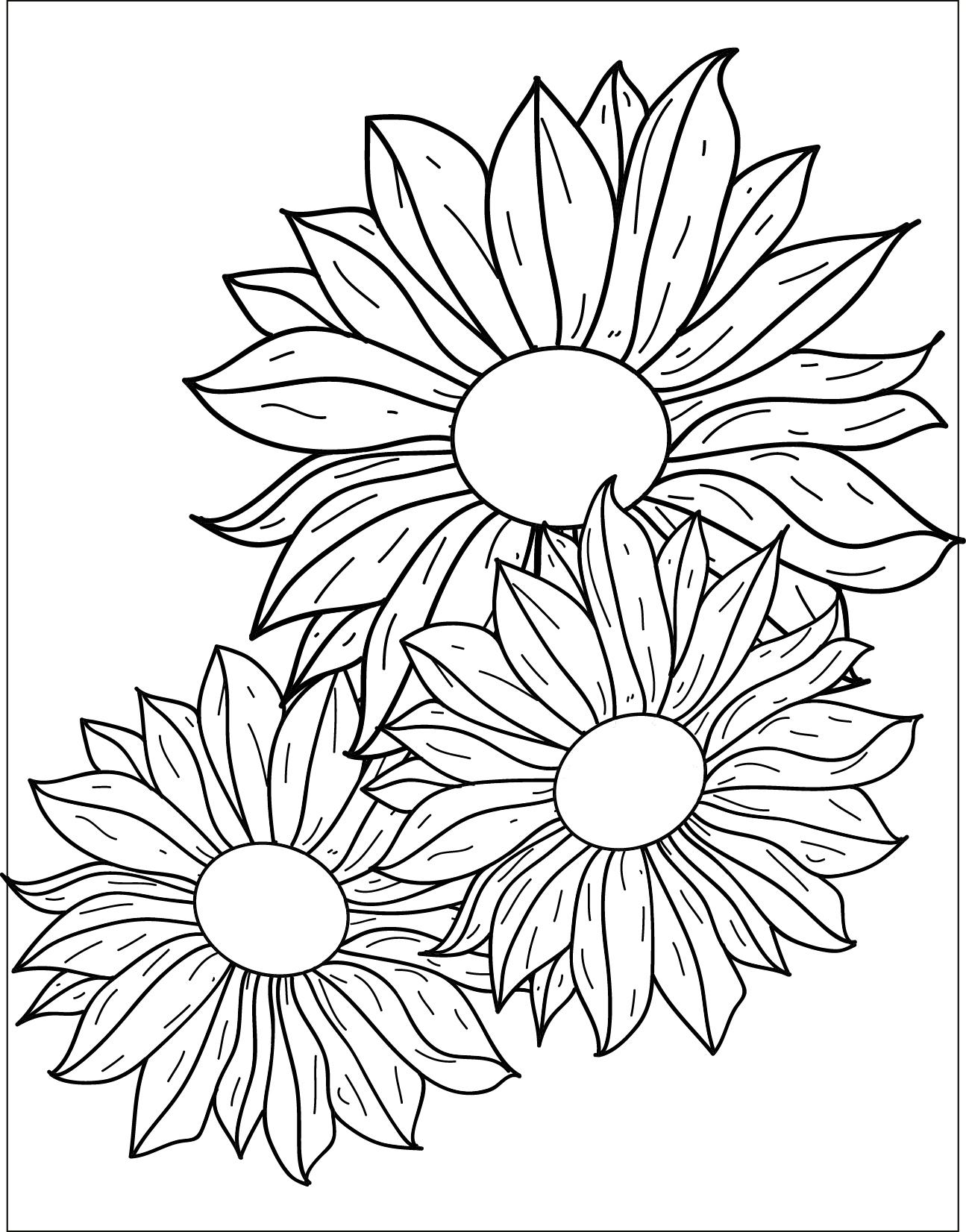 Coloriage gratuit fleurs marguerites - Coloriage colorier ...
