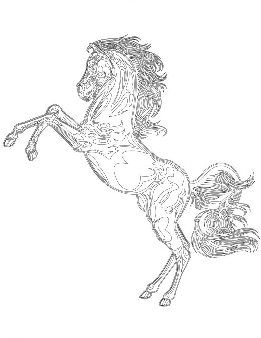 Coloriage gratuit, cheval mustang sauvage
