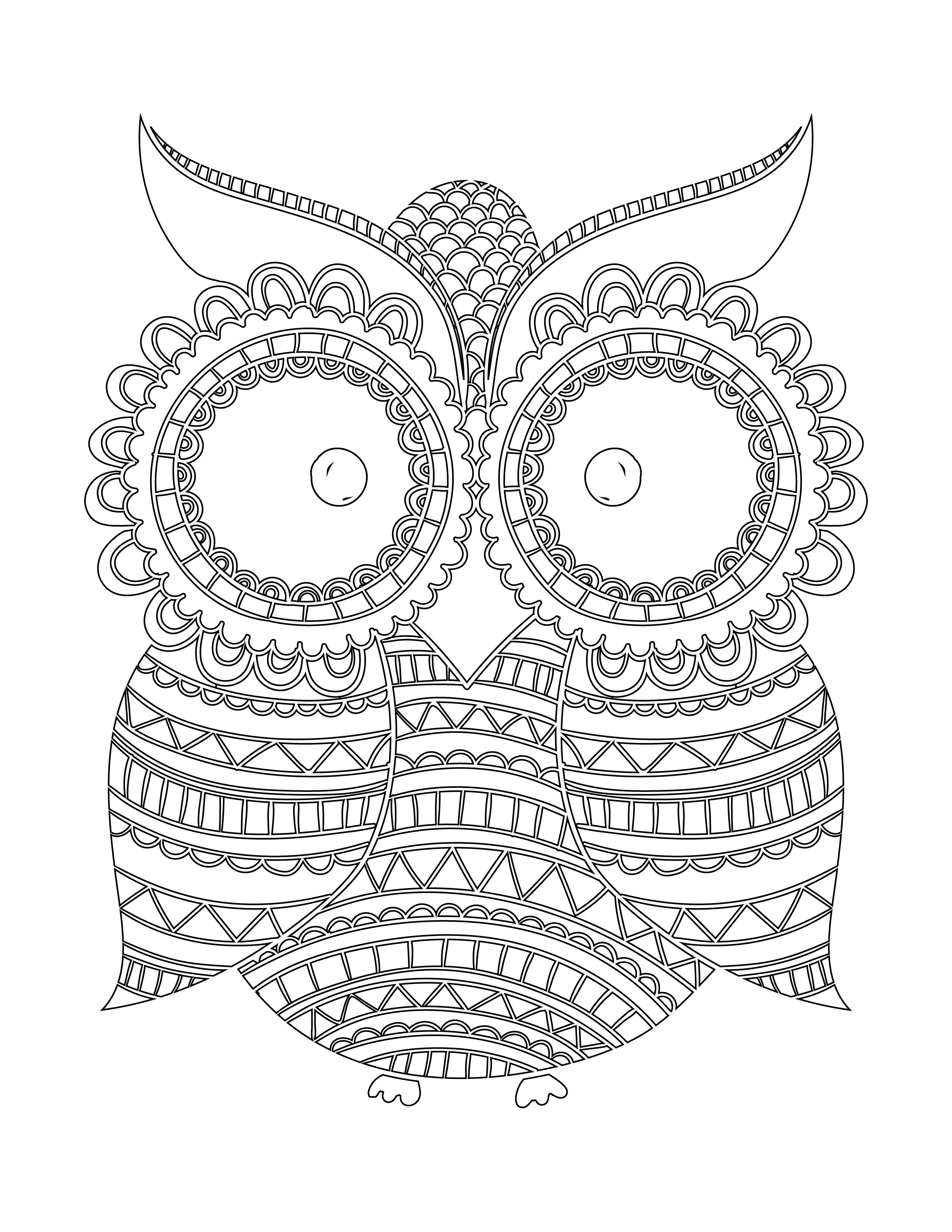 Imprimer coloriage hibou nuit blanche - Hibou en dessin ...