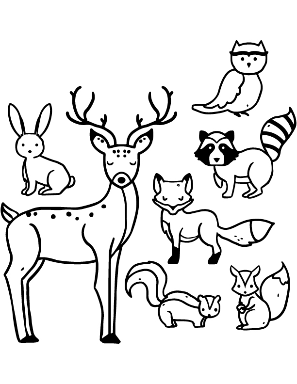 animaux a colorier de la foret gratuit. Black Bedroom Furniture Sets. Home Design Ideas