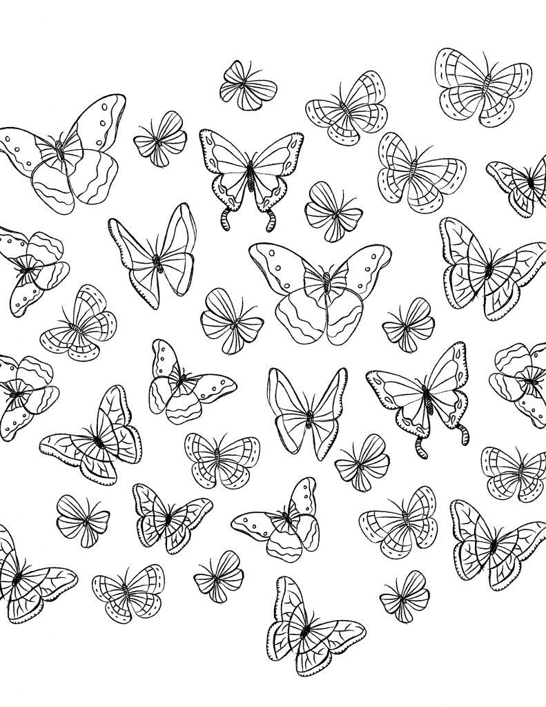 Envolée de papillon coloriage a colorier - Artherapie.ca