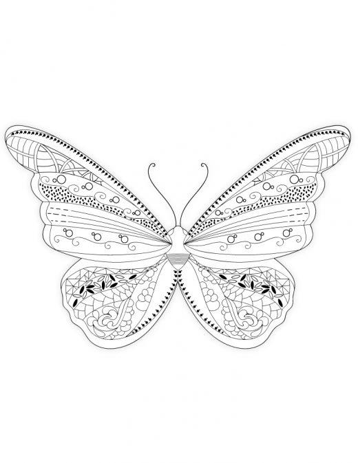 Image à imprimer pour adulte papillon délicat