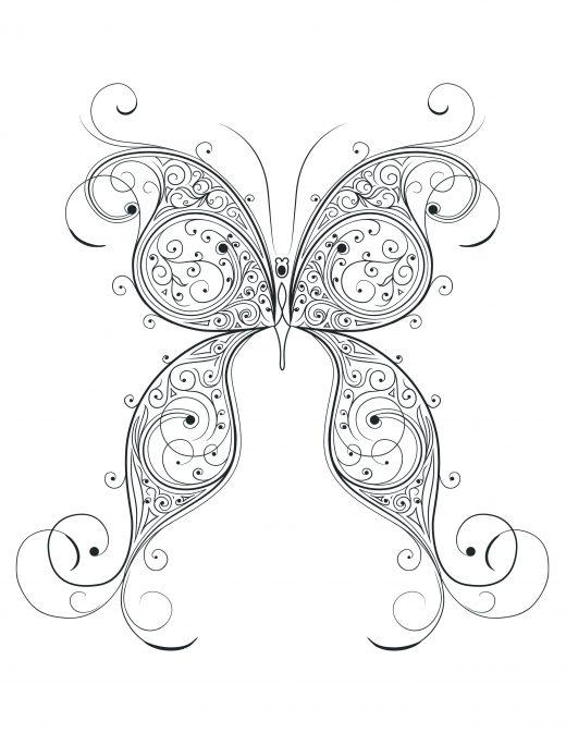 Coloriage de la nature papillon doodle difficile