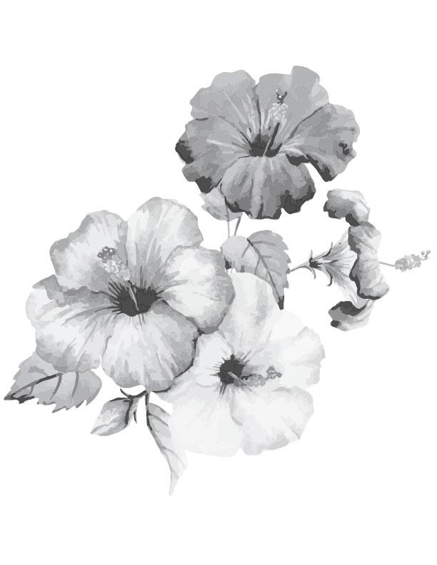 Coloriage gratuit imprimer fleurs hibiscus grayscale - Dessin d hibiscus ...