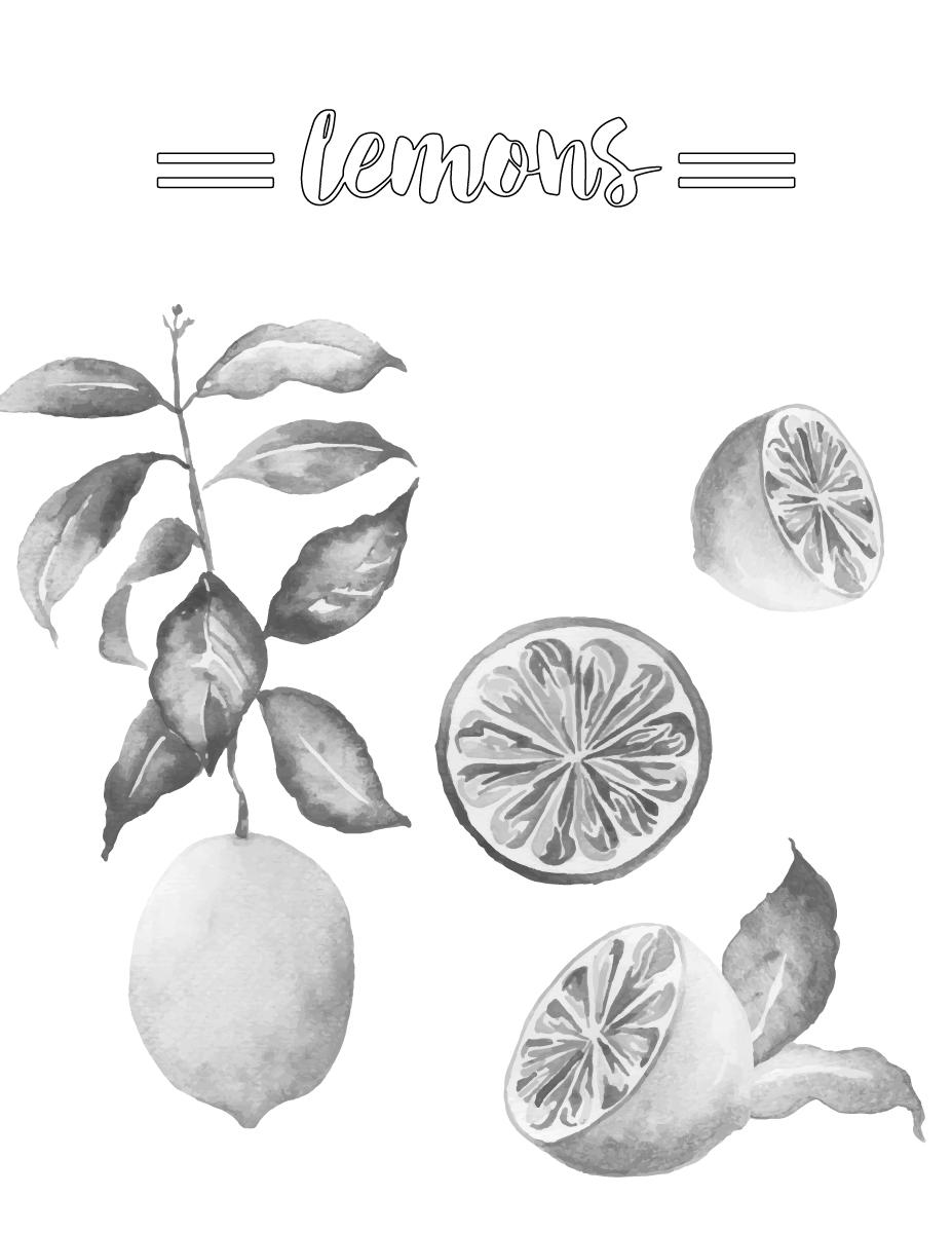 Coloriage grayscale citron frais imprimer - Coloriage citron ...