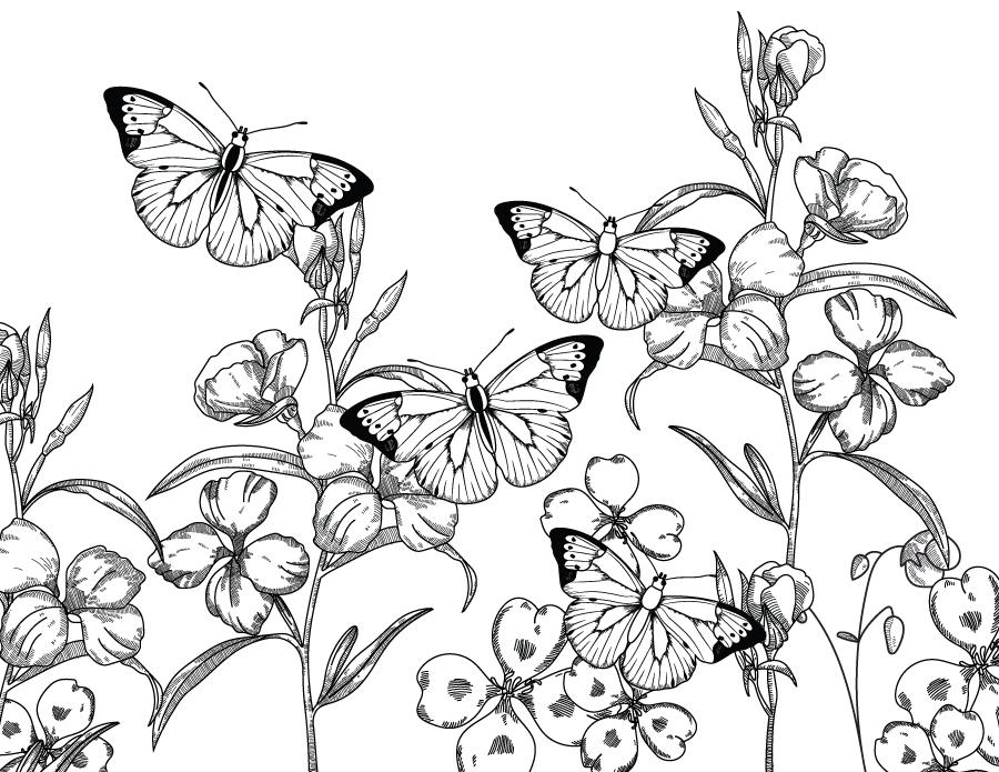 Paysage nature papillons à imprimer et colorier ...
