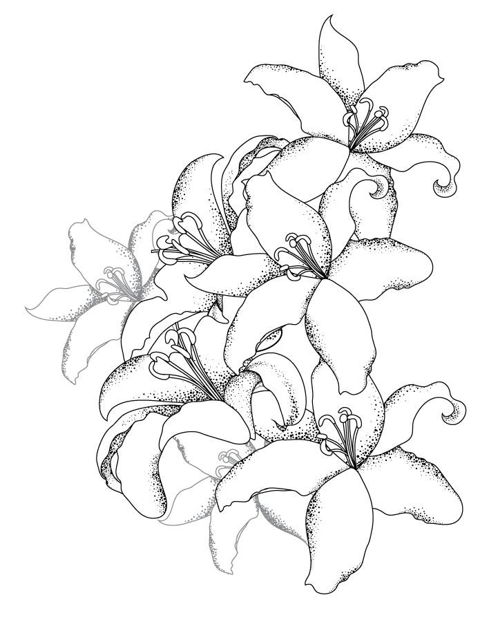 Bouquet de lys coloriage pour adulte gratuit - Coloriage fleur de lys ...