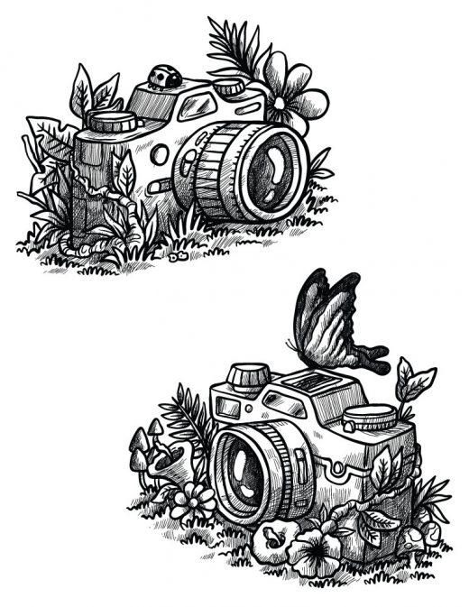 Photographie nature canon nikon appareil à colorier