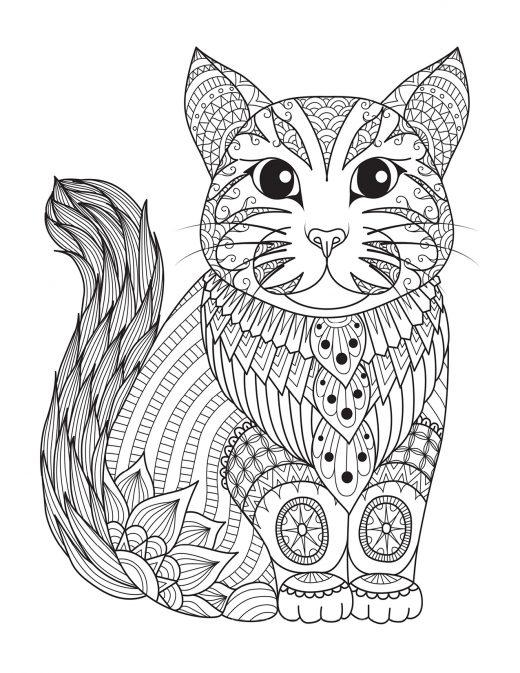 Chat coloriage pour adulte à imprimer par Bimbimkha