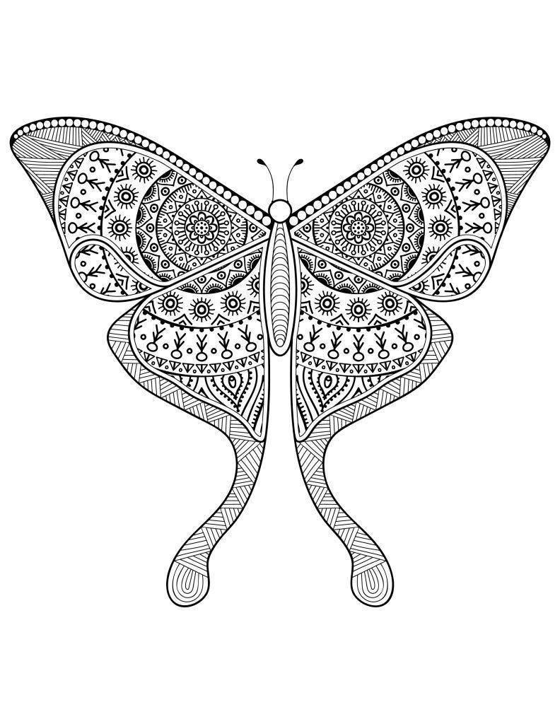 Dessin pour adulte délicat papillon à imprimer difficile - Artherapie.ca