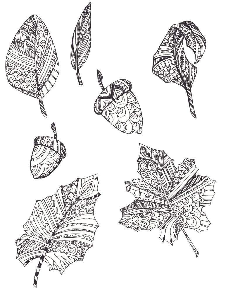 Imprimer des coloriages feuilles automne gratuit - Coloriage feuilles d automne ...